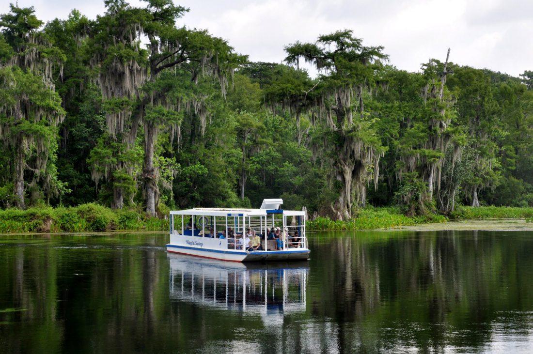 FLORIDA PANHANDLE : Wakulla Spring