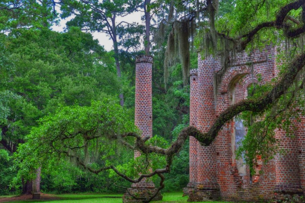 SOUTH CAROLINA : OLD SHELDON CHURCH RUINS