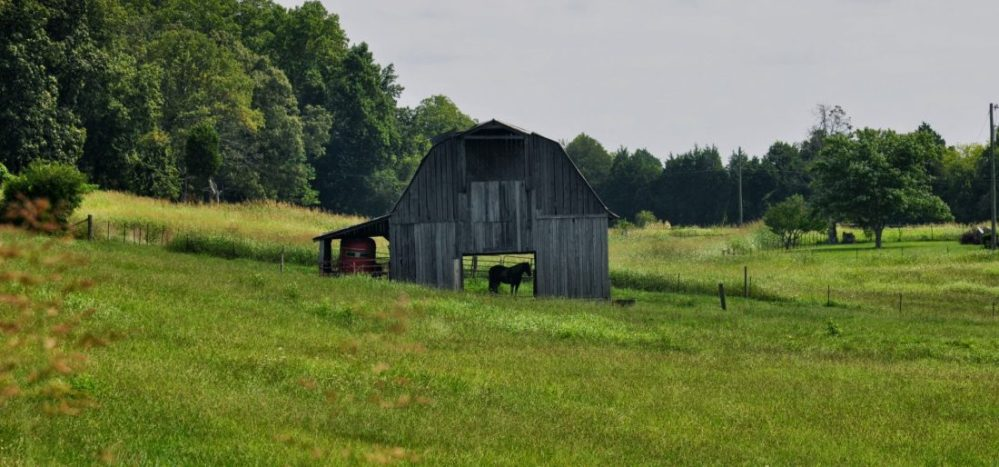 Tennessee Country
