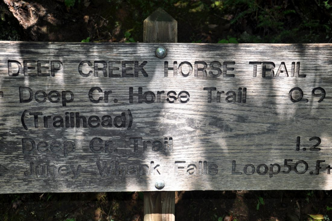 Great Smoky Mountains: Deep Creek