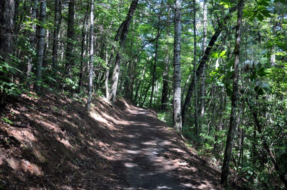 Great Smoky Mountains: Deep Creek