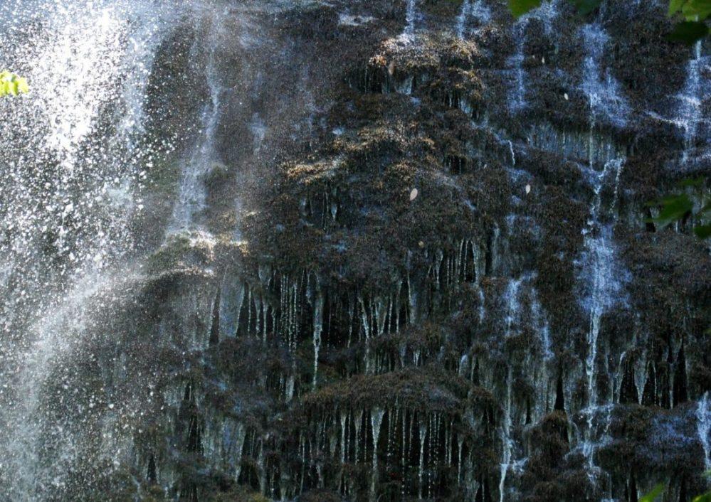 Great Smoky Mountains: Mingo Falls