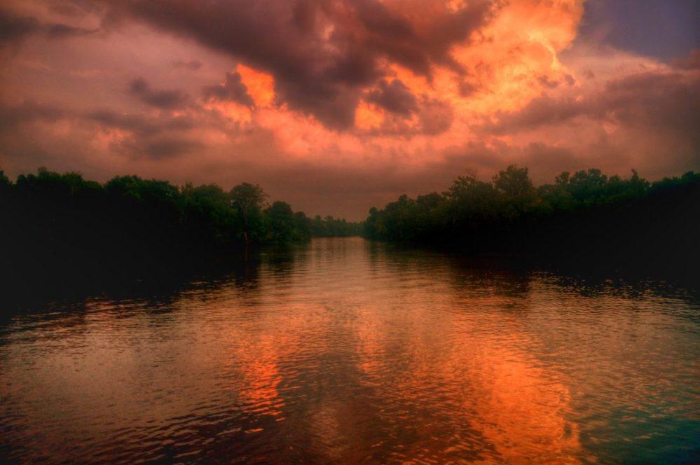 Louisiana : Lake Fausse Pointe