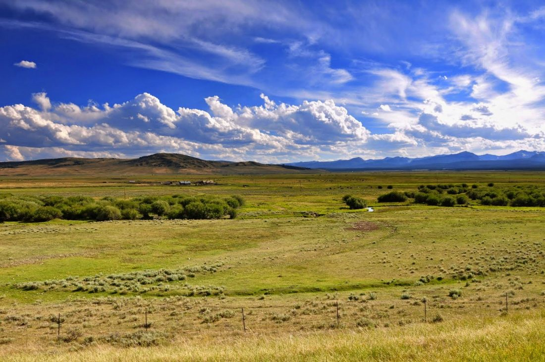 Montana : Wisdom