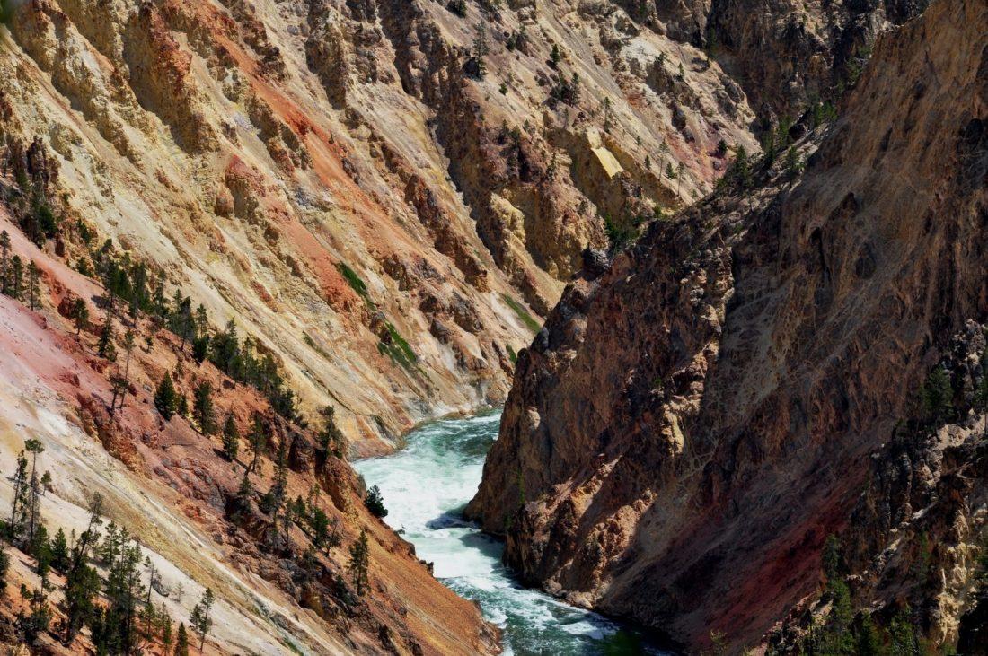 Yellowstone : canyon : north rim trail
