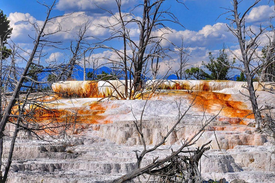 Yellowstone : Mammoth Hot Springs