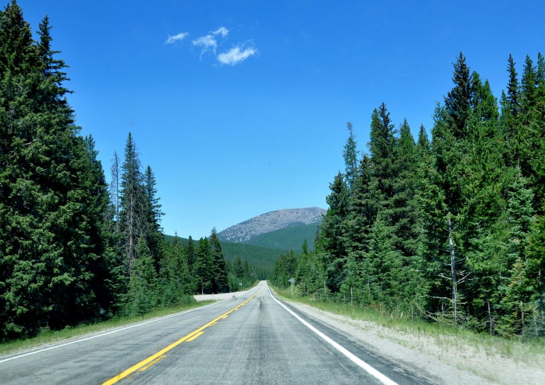Montana : Lewis and Clark National Forest