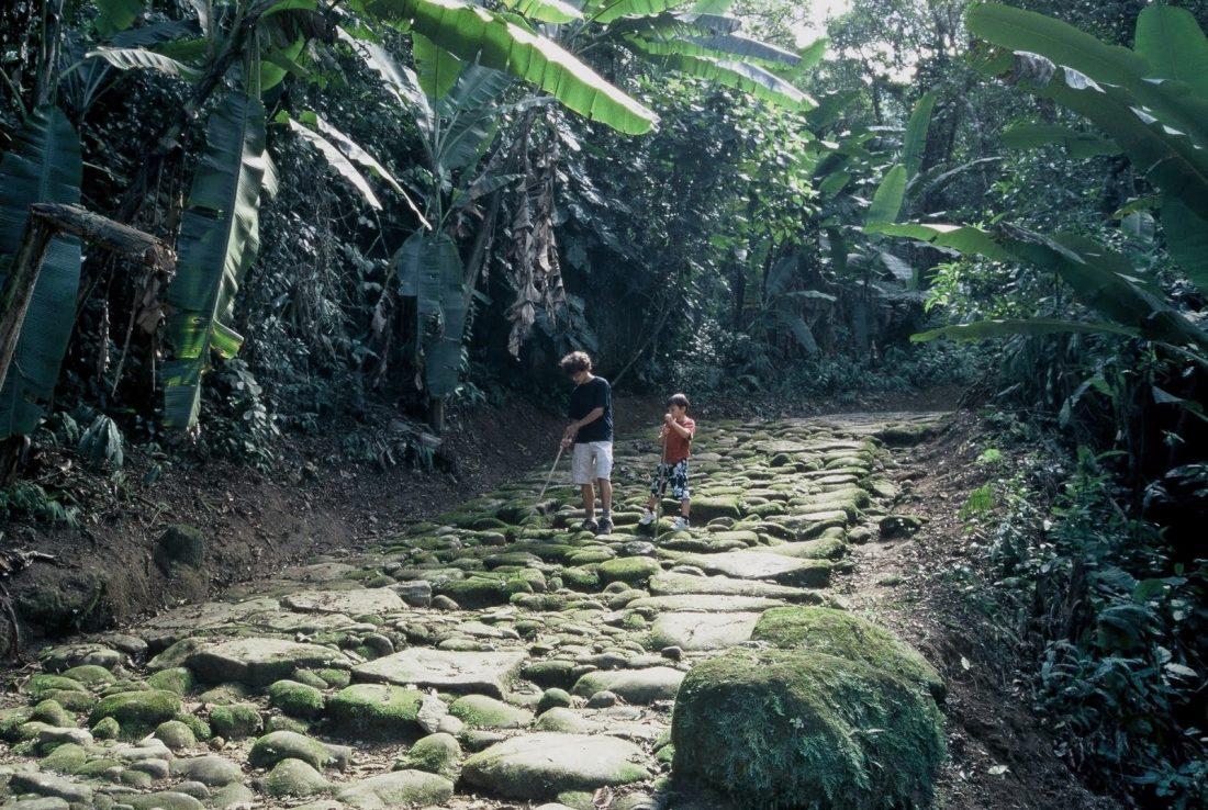 Estado do Rio : Paraty Caminho do Ouro