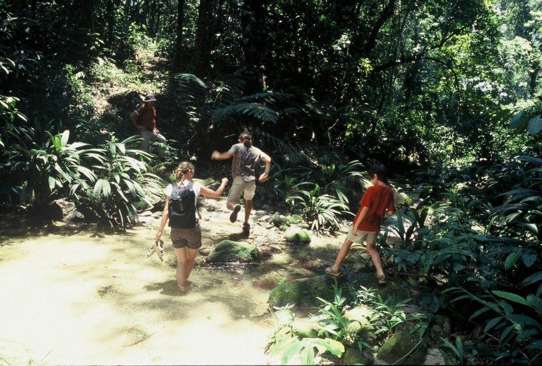 Venezuela: Henri Pittier National Park
