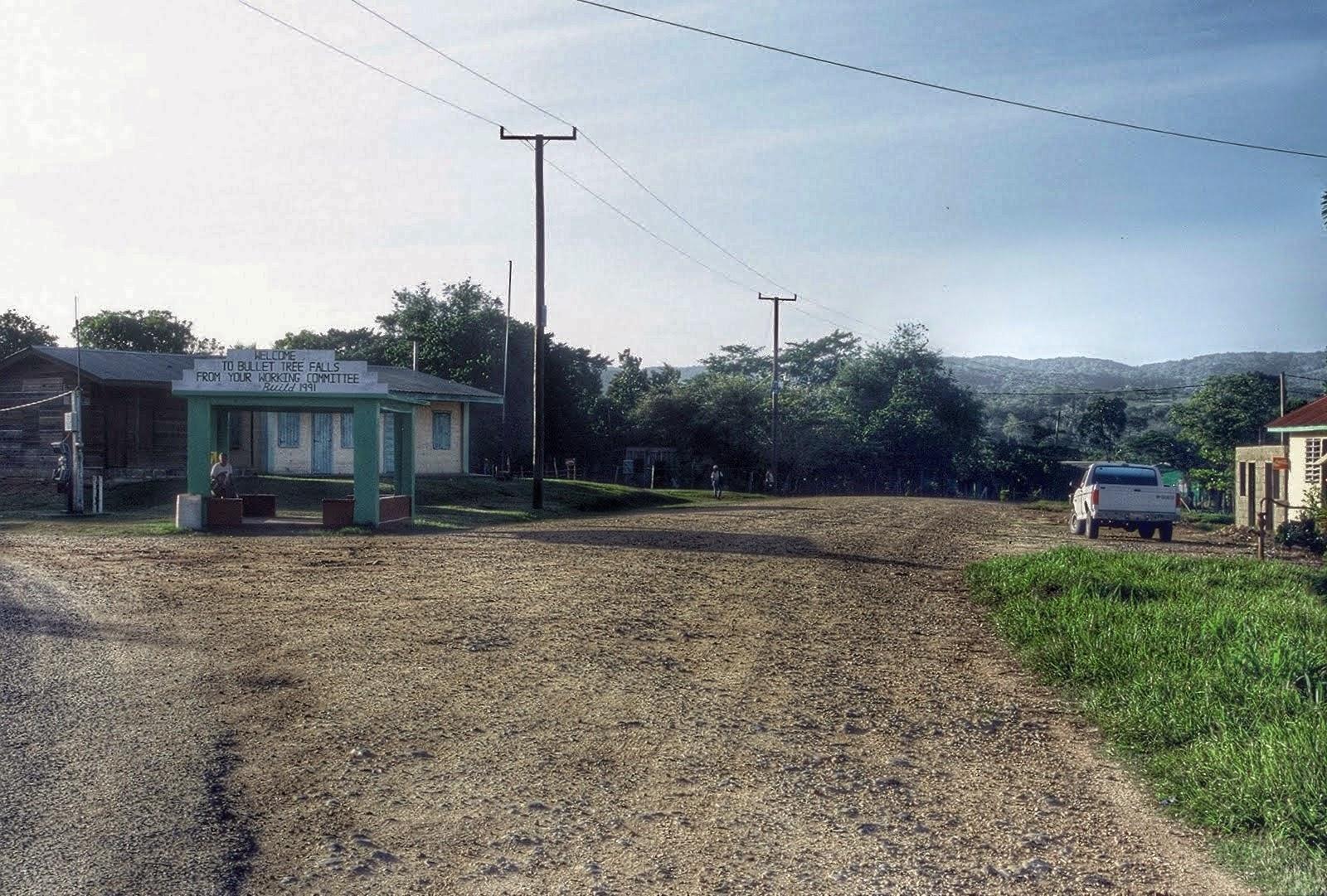 Belize : Bullet Tree Falls