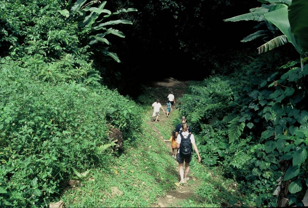 Parque Nacional Juan C. Falcon.(caminho dos escravos)