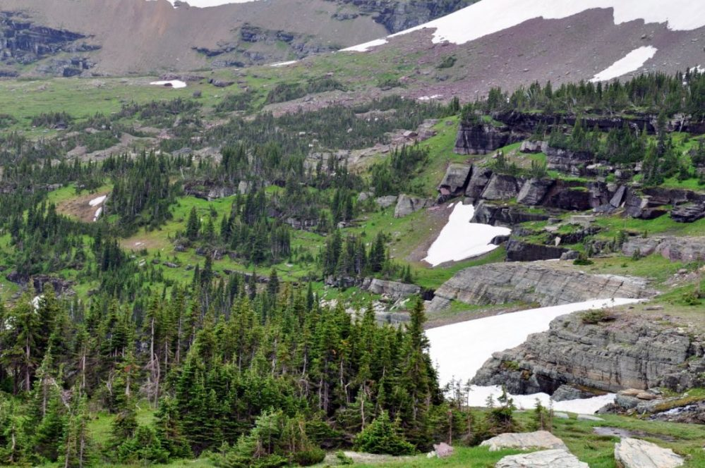 Glacier National Park : Hidden Lake Trail