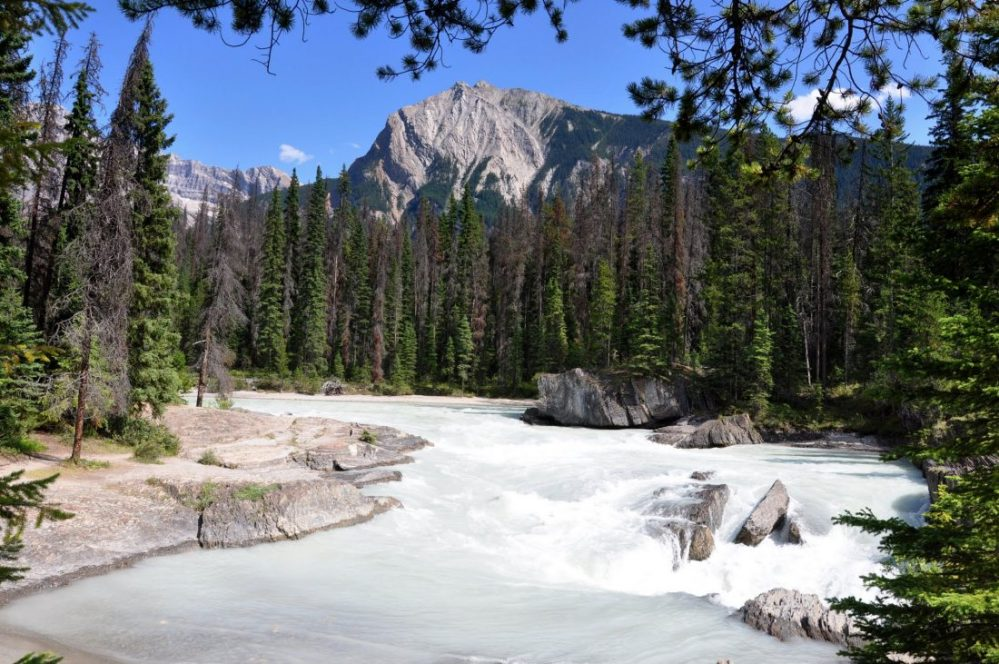 Yoho National Park (Natural Bridge Arches Over the Kicking Horse River)