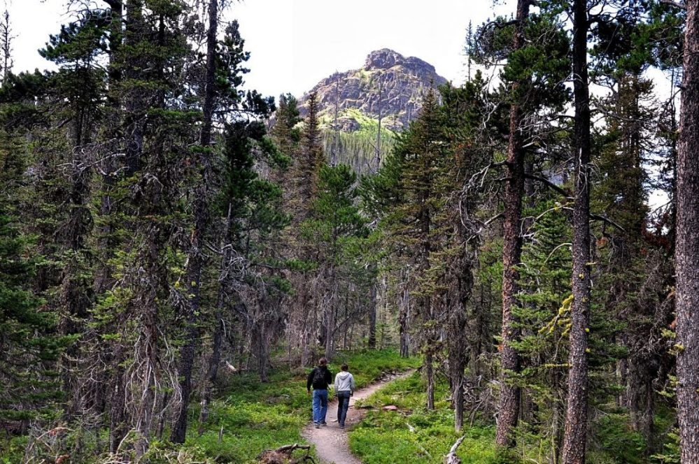Glacier National Park : Two Medecine Lake Trail