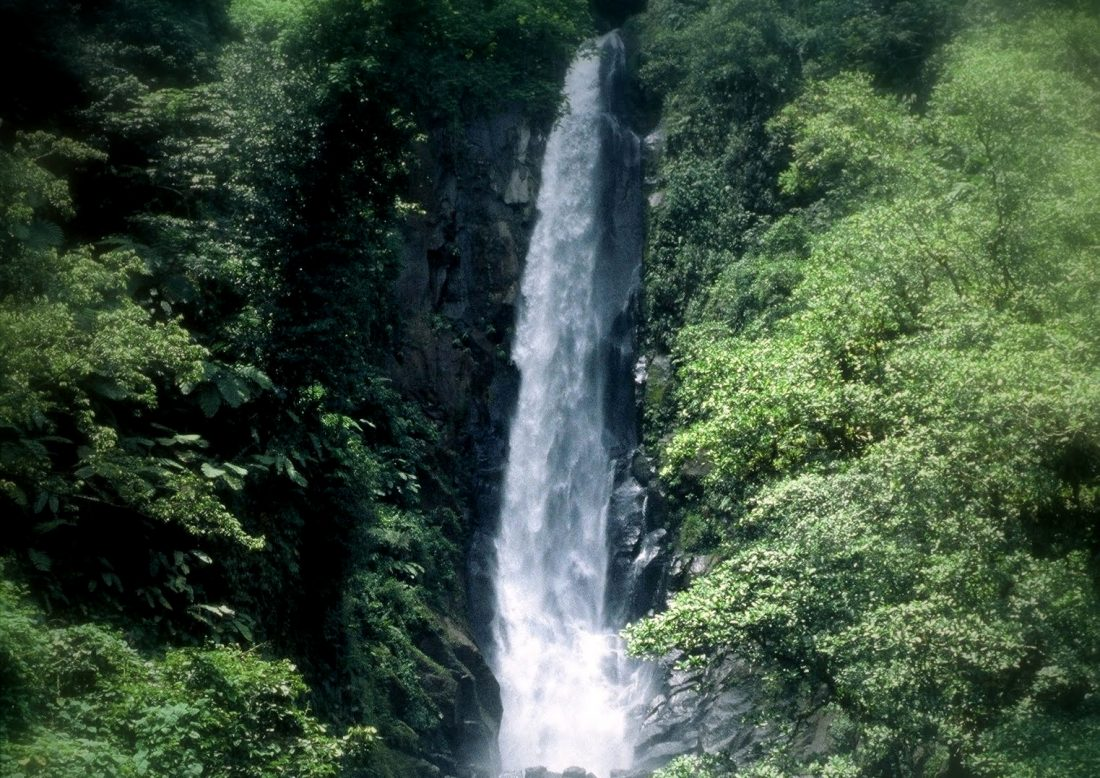 Dominica : Morne Trois Pitons National Park