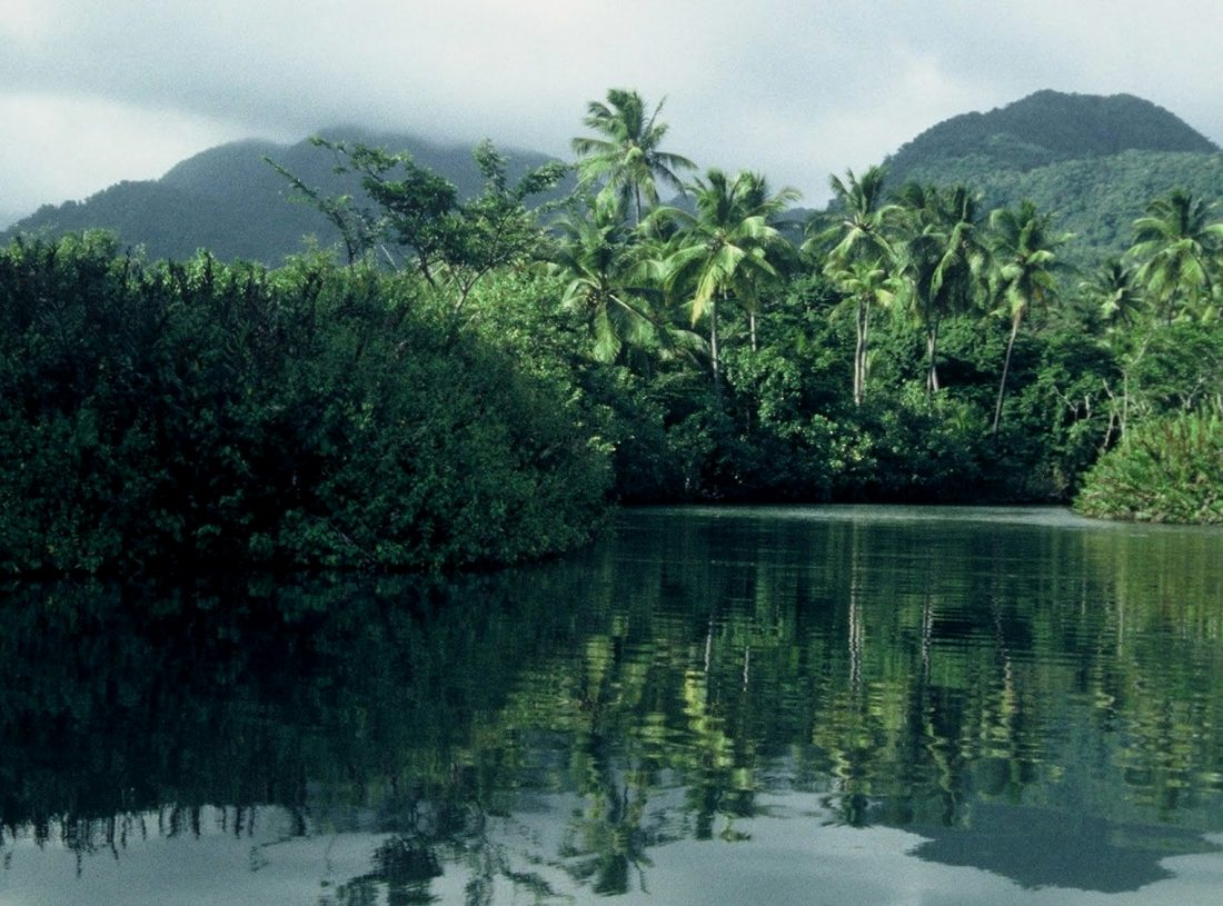 Dominica : Indian River