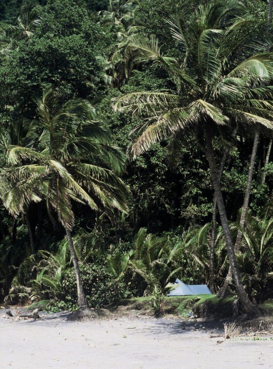 Martinique : Trace Prêcheur-Grand-Rivière (Bivouac Anse à Voile)