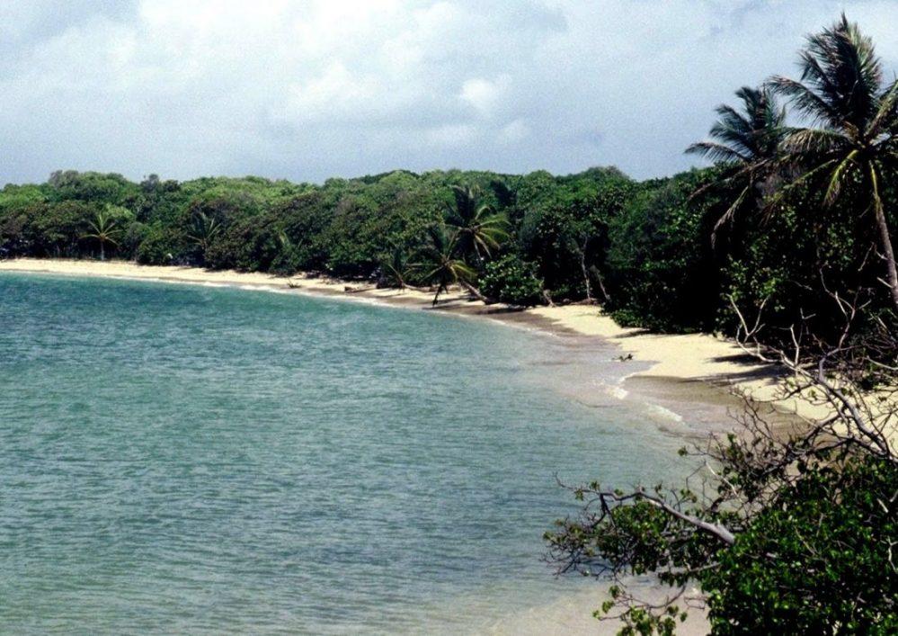 Martinique : Gande Anse des Salines