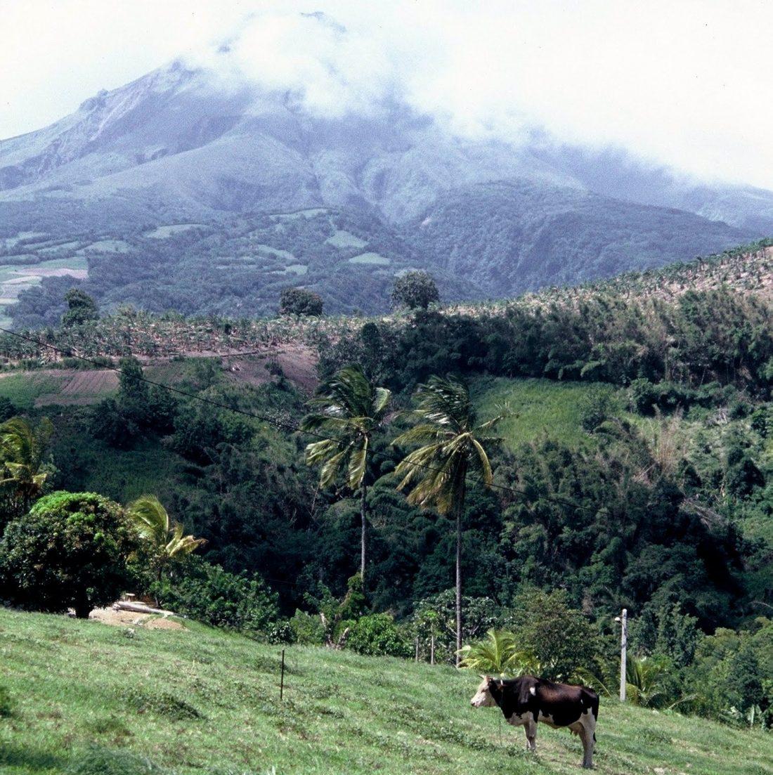 Martinique : Montagne Pelée