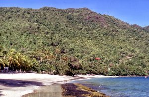 Previous Stop : Saint Vincent and the Grenadines