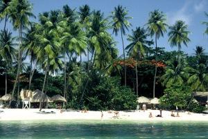 Next Stop : Tobago