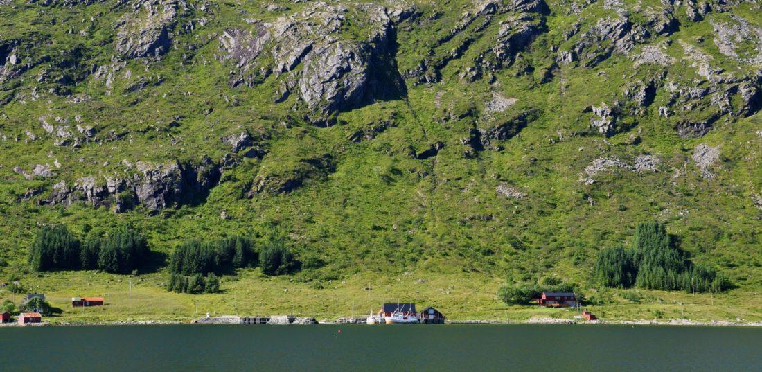 Skjelfjord : Lofoten Fiskarheim AS