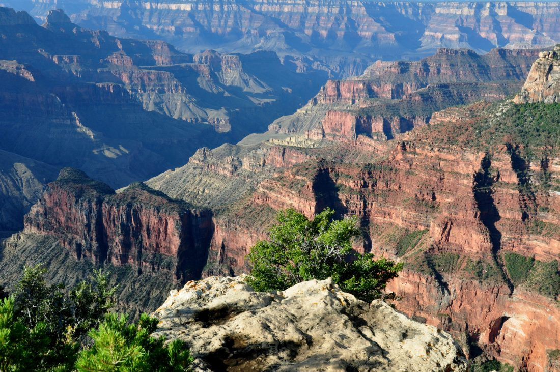 Grand Canyon : North Rim (Bright Angel Point)