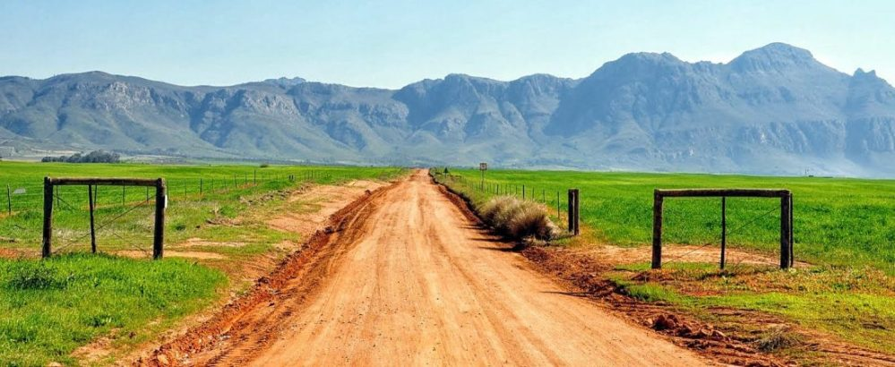 South Africa : Swartland