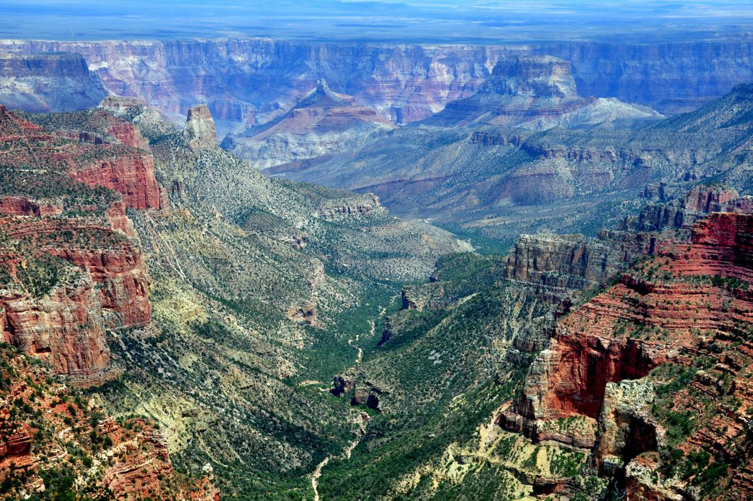 Grand Canyon north rim (Roosevelt Point)