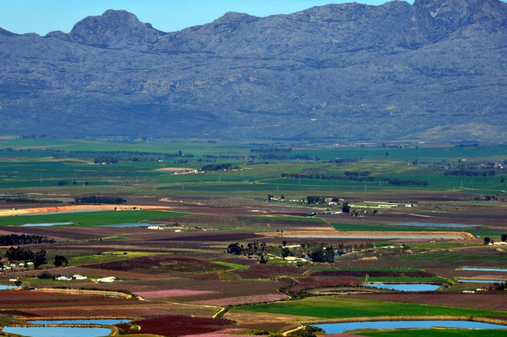 South Africa : Ceres