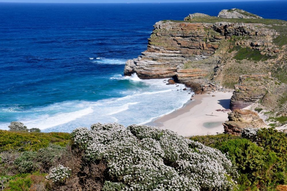 South Africa : Cape Point National Park