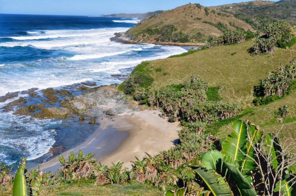 Hluleka Nature Reserve : Coastline Trail