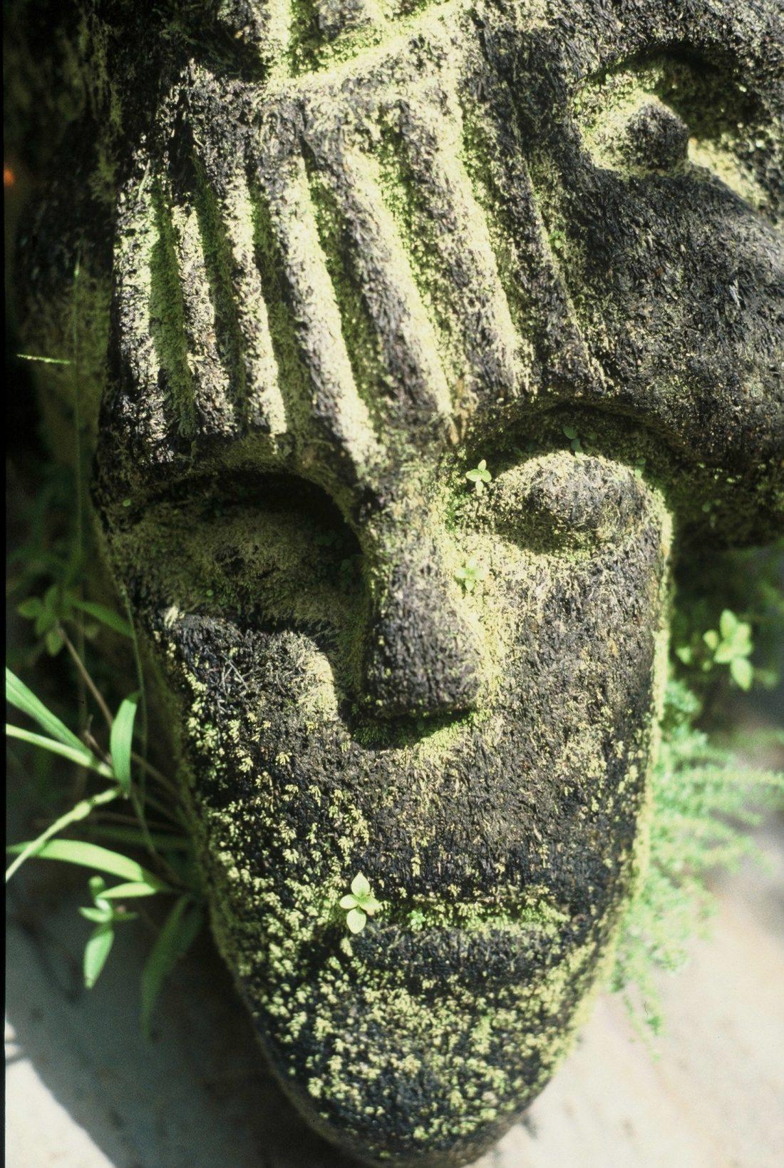 Guadeloupe : Parc archéologique des Roches gravées (arawak)
