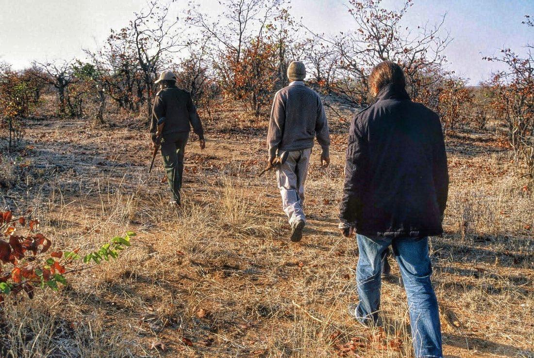 Kruger bush walk