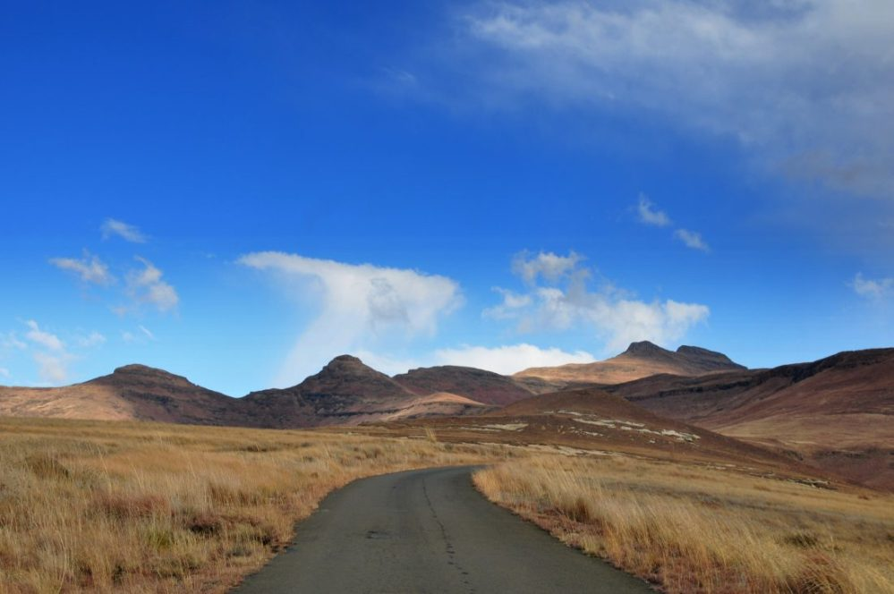 Golden Gate Highlands National Park : Blesbok Loop