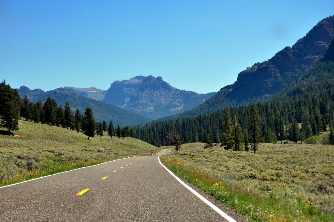Yellowstone : Lamar Valley