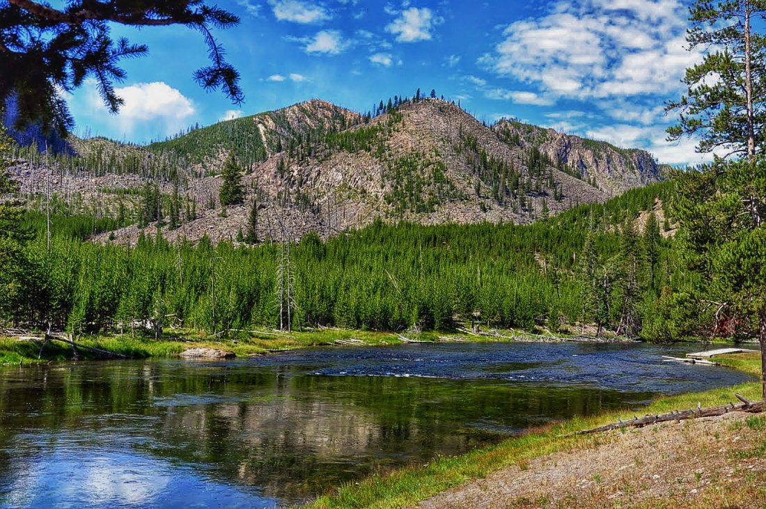 Yellowstone : Madison River