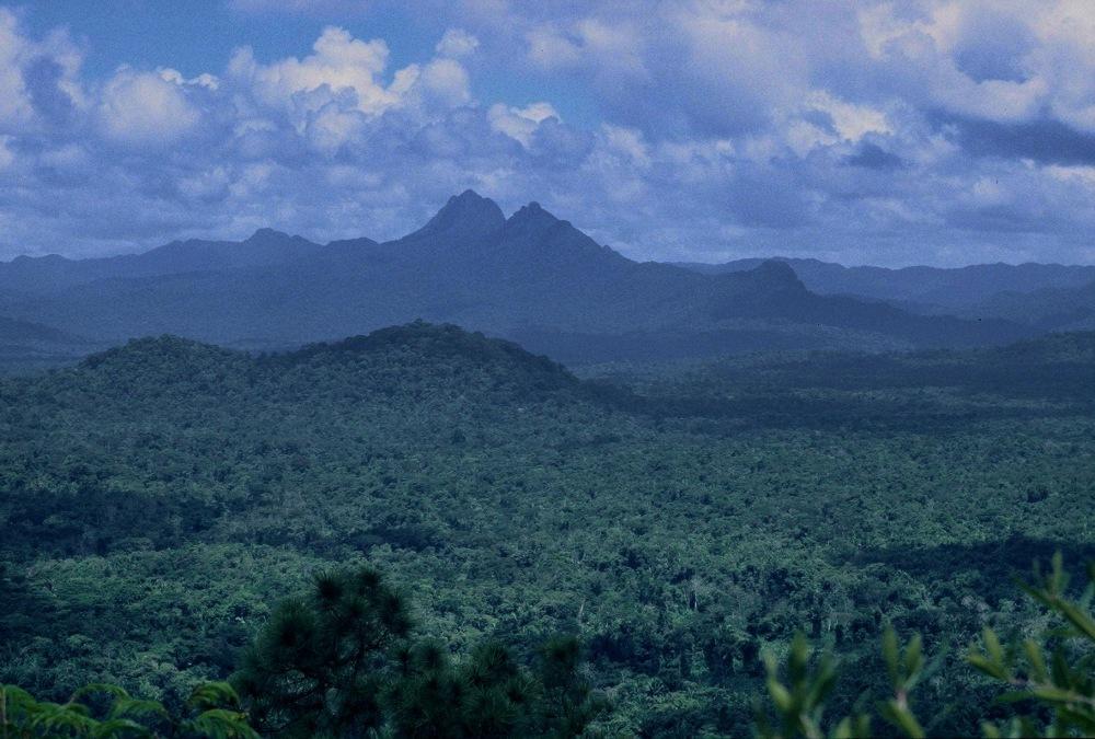 Belize : Cockscomb Basin Jaguar Preserve Ben's Bluff