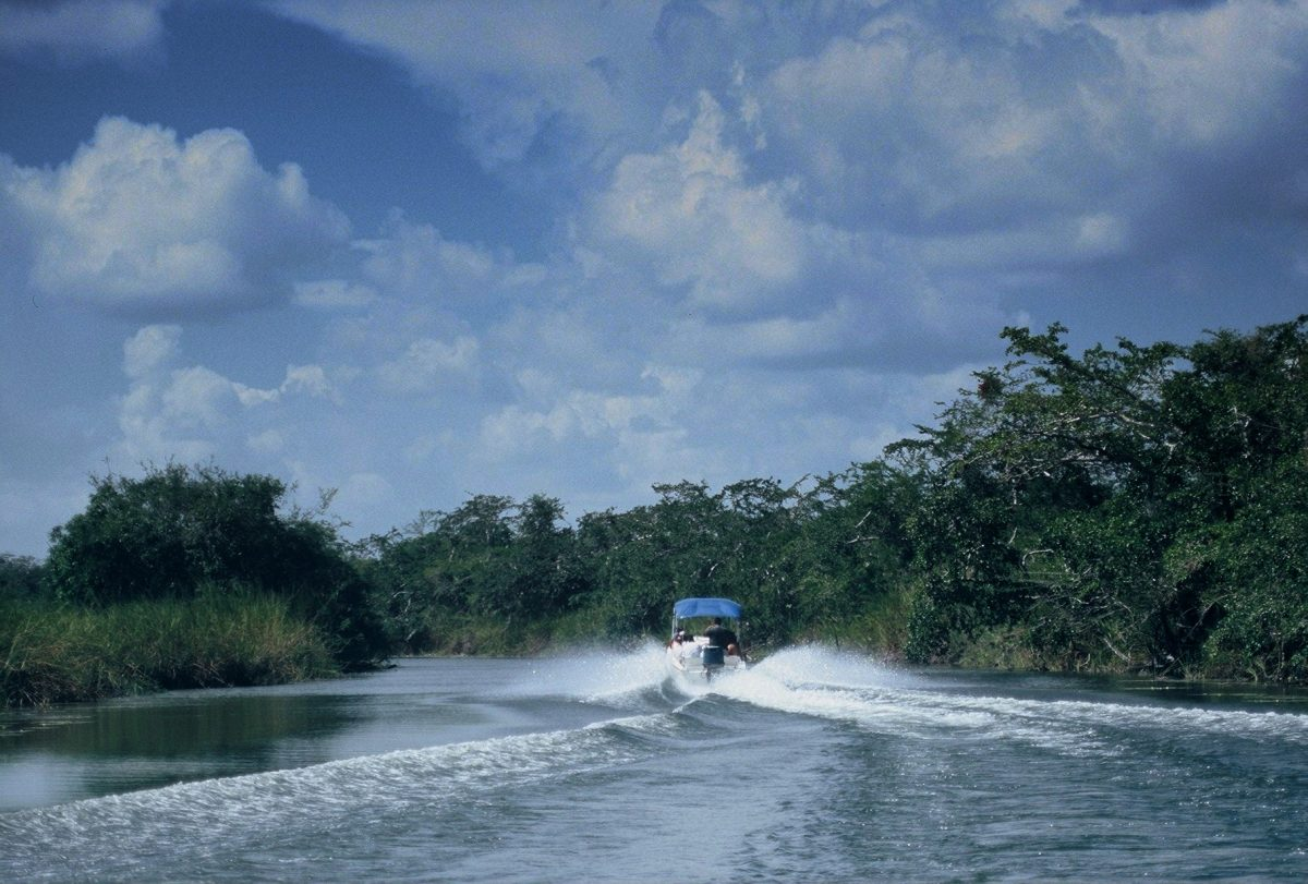 Belize : : Lamanai River Tour