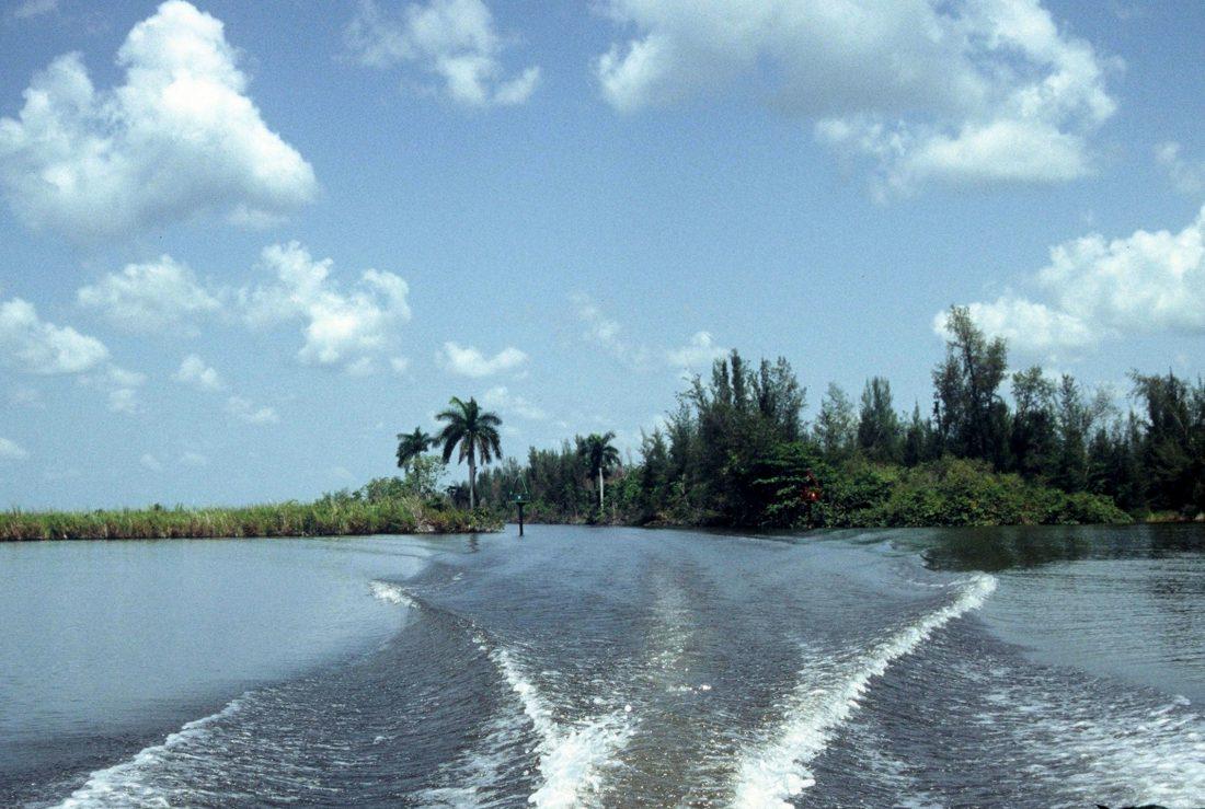 Cuba : Laguna del Tesoro