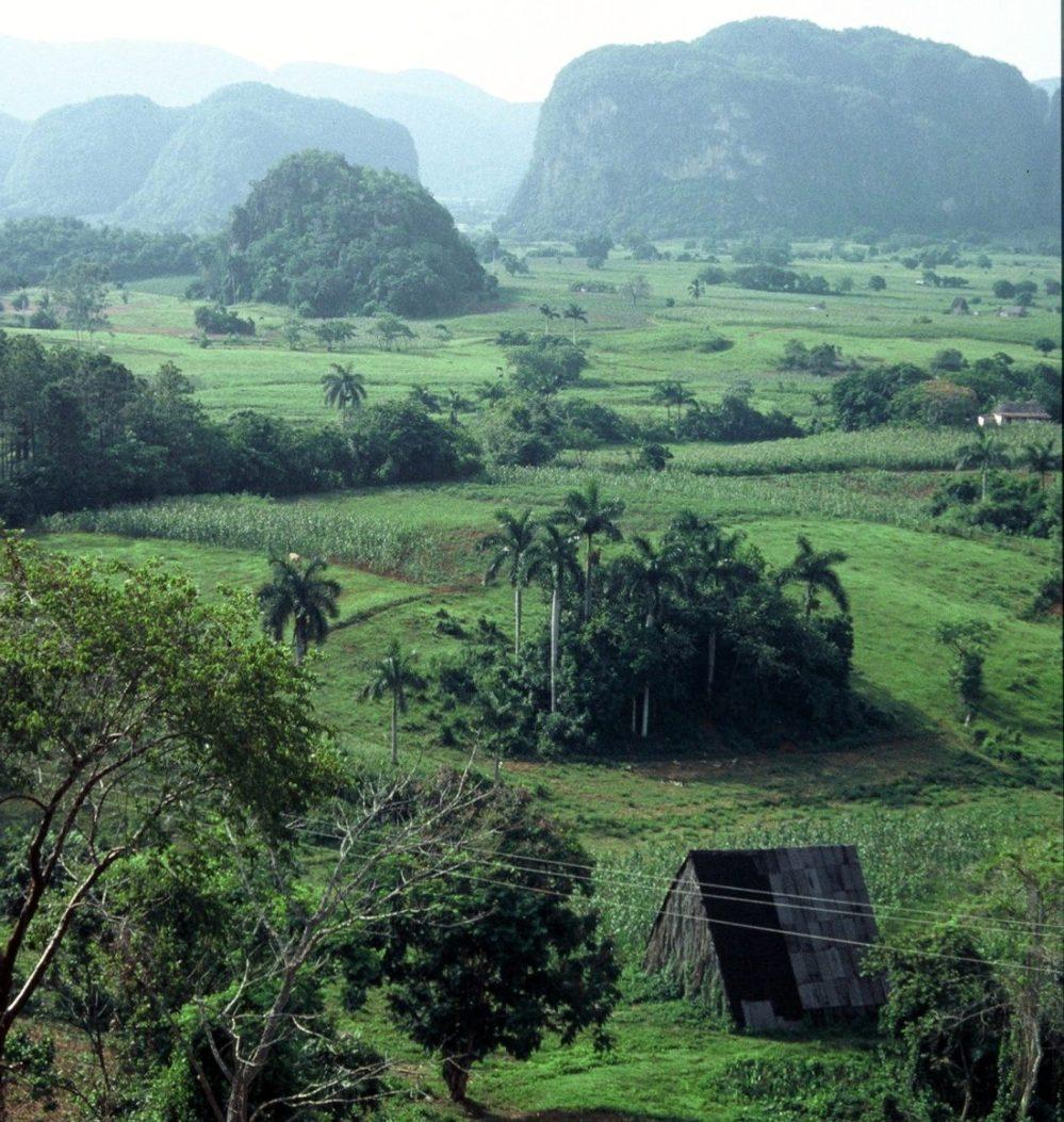 Cuba : Viñales