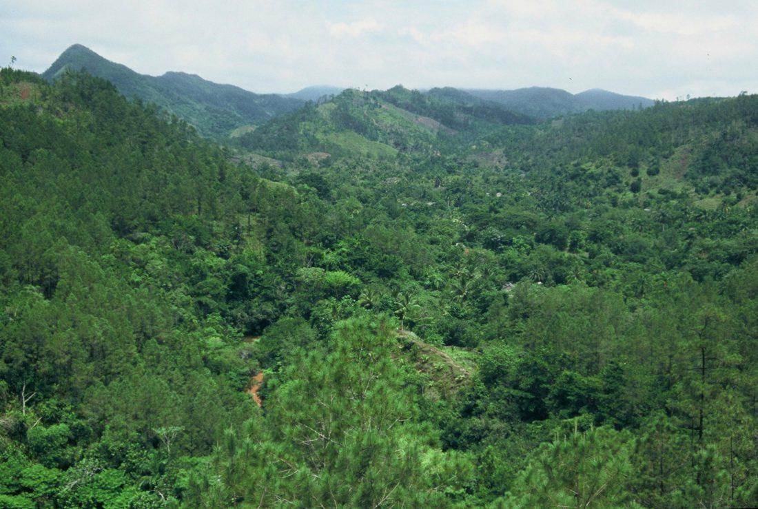 Cuba Parque Natural Topes de Collantes