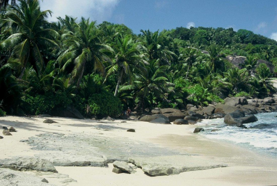Seychelles : Mahé discrete