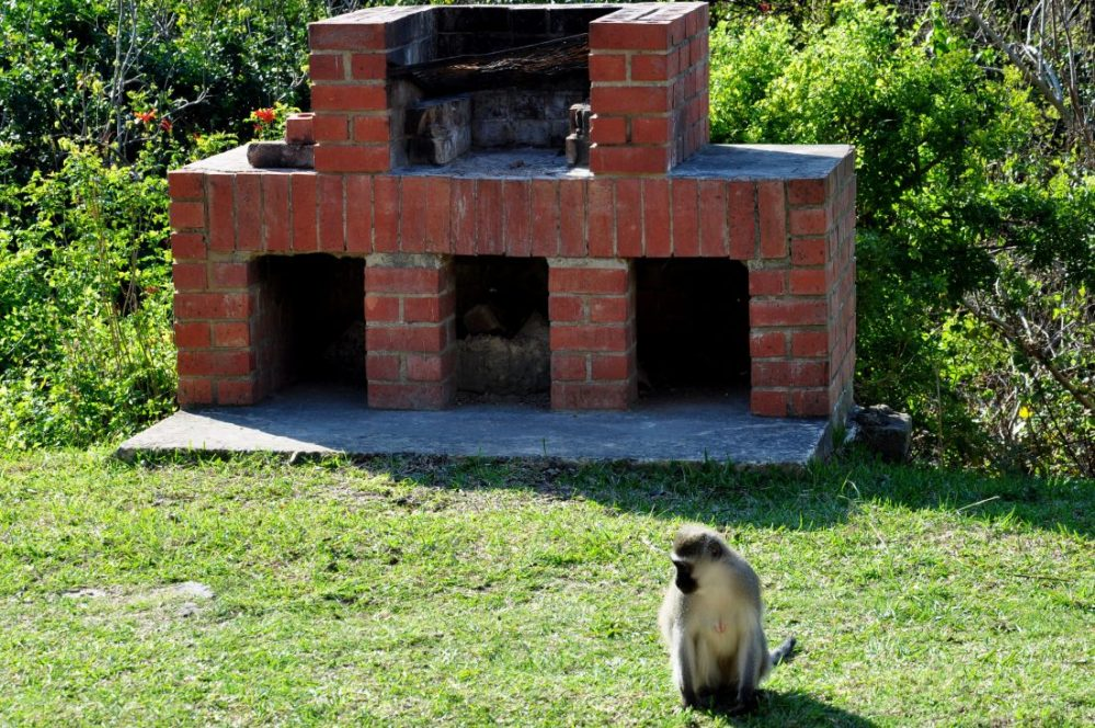 Silaka Nature Reserve : Braai in Chalet #15
