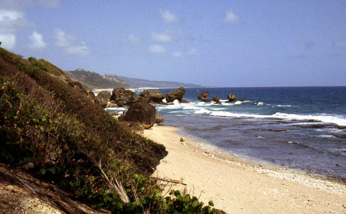 Barbados : Bathsheba Beach
