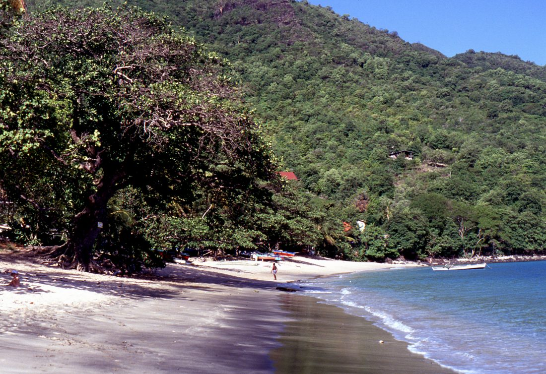 Saint Vincent and the Grenadines : Bequia Lower Bay