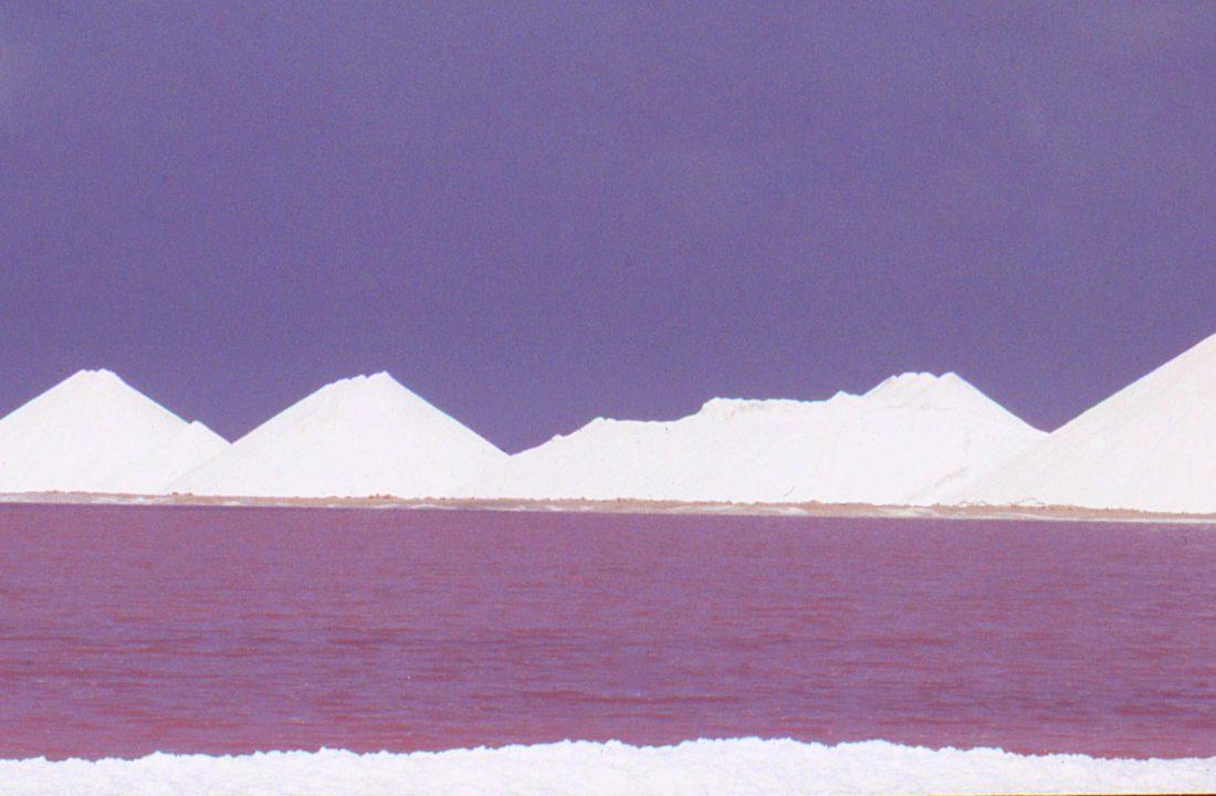 Bonaire : Cargill Salt Works