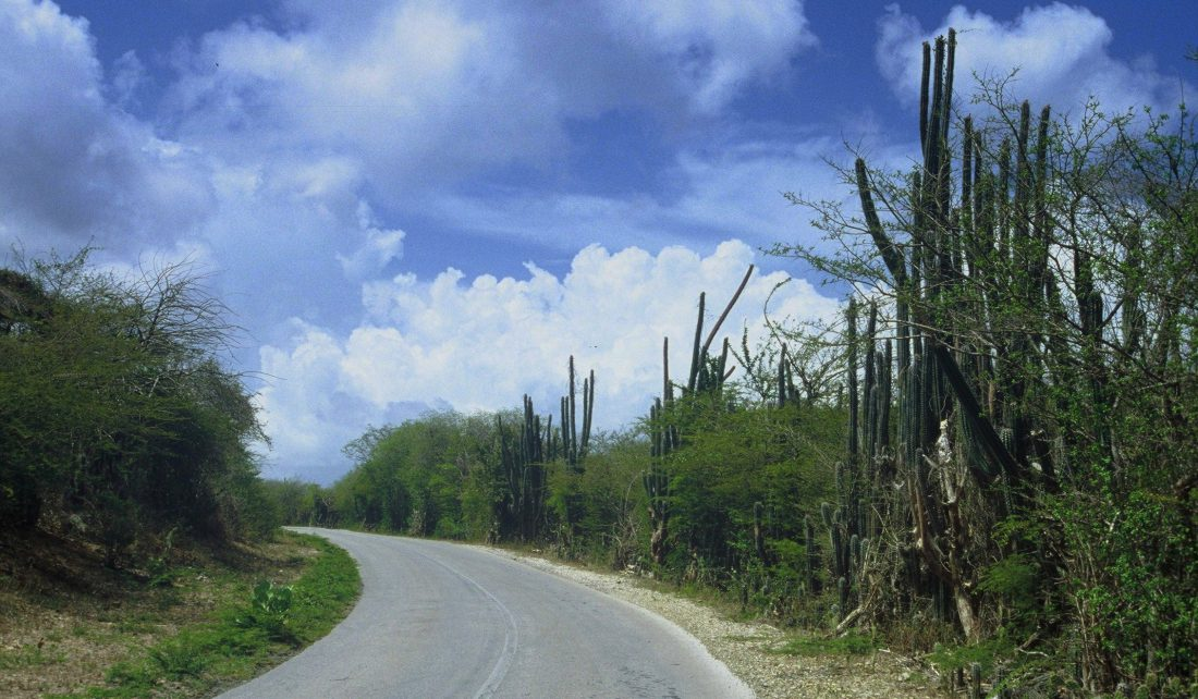 Curaçao : Road to Grote Knip