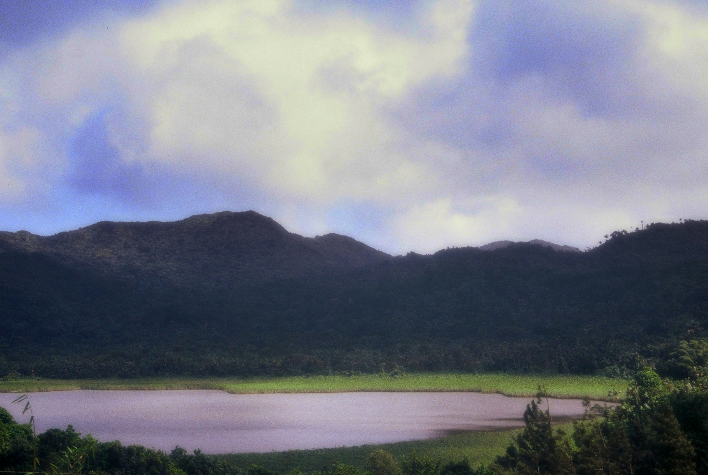 Grenada : Grand Etang National Park