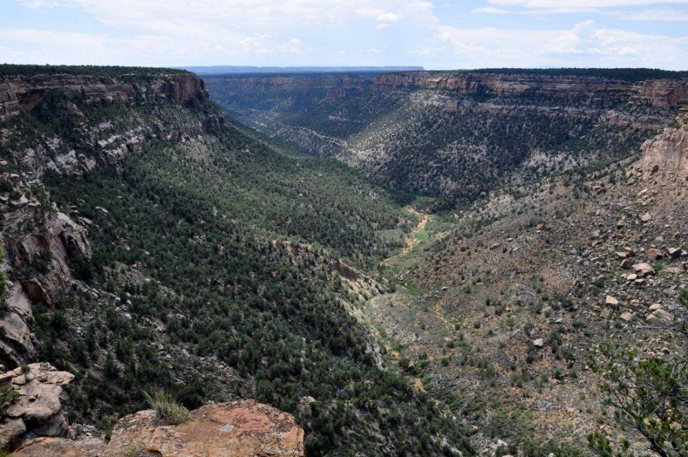 Mesa Verde : Navajo Canyon View